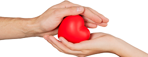 Hands holding heart - Information Connection